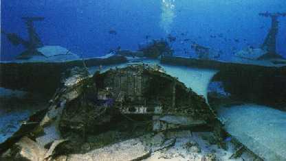 Scuba diving cozumel mexico - Cozumel dive sites ...