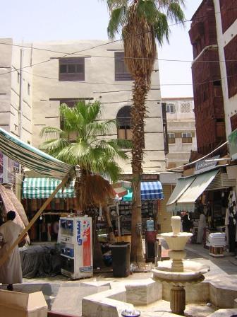 palmtreeSoukAl-AlawiSt2
