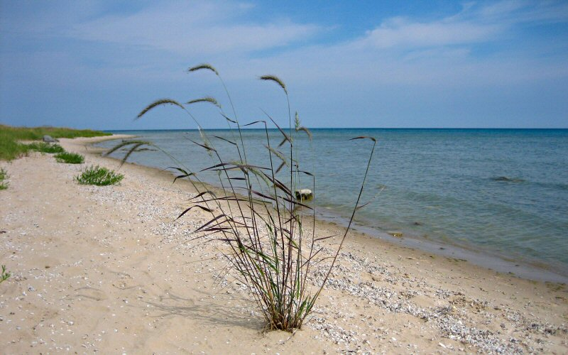 manitou beach cougars personals This home is located at 3651 geneva hwy manitou beach, mi 49253 us and has been listed on homescom since 11 april 2018 and is currently priced at $450,000, approximately $149 per square foot.