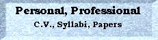 Personal and Professional: c.v., syllabi, papers