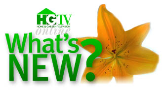 Picture Of The Hgtv Logo Here